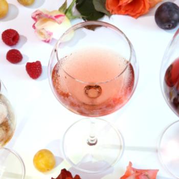 von-Salis-Weinkurs-Wein-und-Sensorik