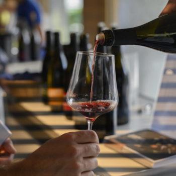 von-Salis-Weinkurs-Rund-um-den-Wein
